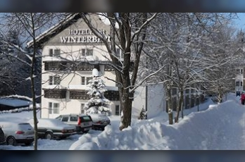 Фото отеля Hotel Winterberg Resort - Featured Image